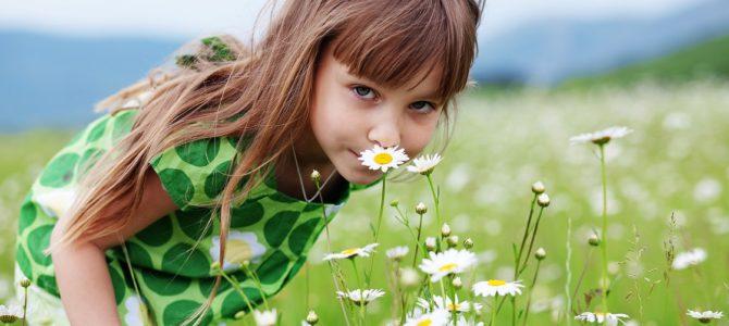 Légúti allergiában szenved?